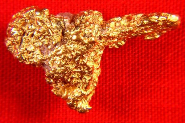 Australian Jewelry Grade Gold Nugget Shaped Like a Birds Head