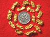 17 Premium Jewelry Grade Australia Gold Nuggets - For Pendants