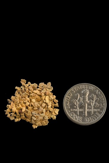 #16 Screen Alaska Gold Nuggets 60 - 70 Gold Nuggets per Gram
