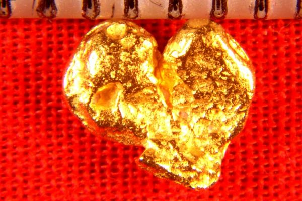 Heart Shaped Gold Nugget Crystal from the Jungles of Venezuela
