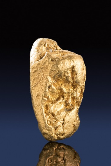Thick and Dense with a Great Form - California Gold Nugget