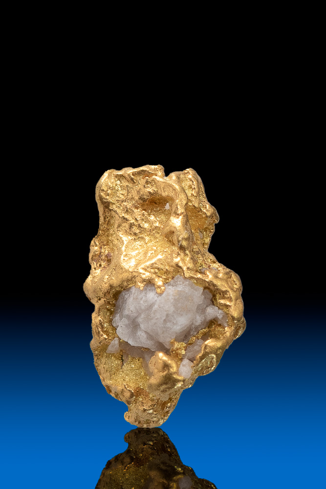 Quartz in its Belly Natural Colorado Gold Nugget - 1.18 grams