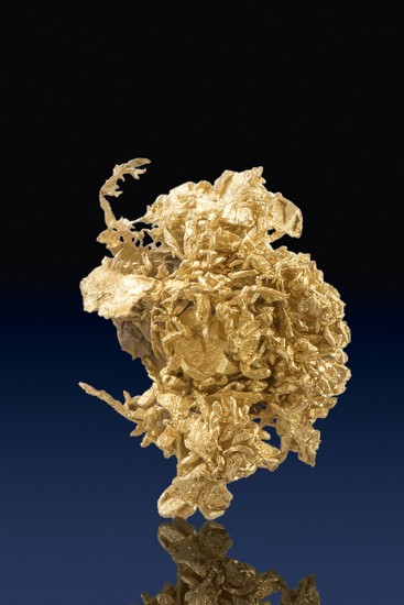 Brilliant Natural Wire Gold Cluster - Olinghouse Gold Mine