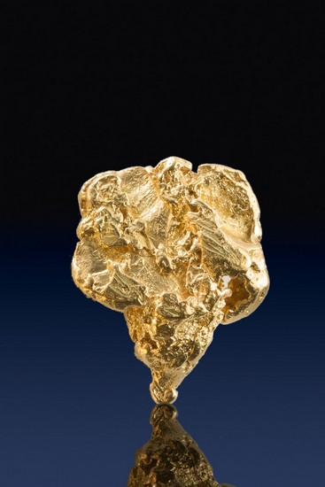 Elephant Head Shaped - Natural Yukon Gold Nugget
