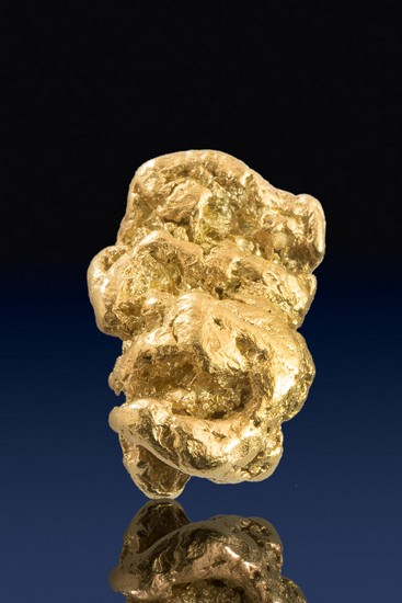 Elongated and Chunky Yukon Gold Nugget